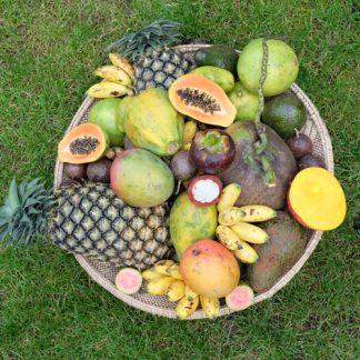 Früchte aus Afrika, Thailand, Sri Lanka und Indien. Lieferung am 29.10