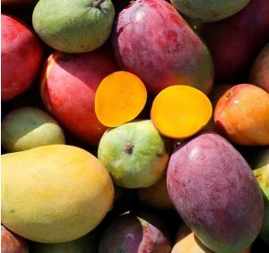Mangos aus Andalusien
