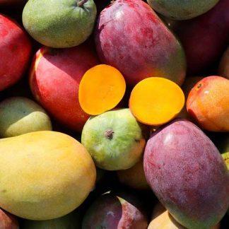 Mangos, Orangen, Guave, Dragonfruit und weitere aus Malaga. Lieferung am 29.10
